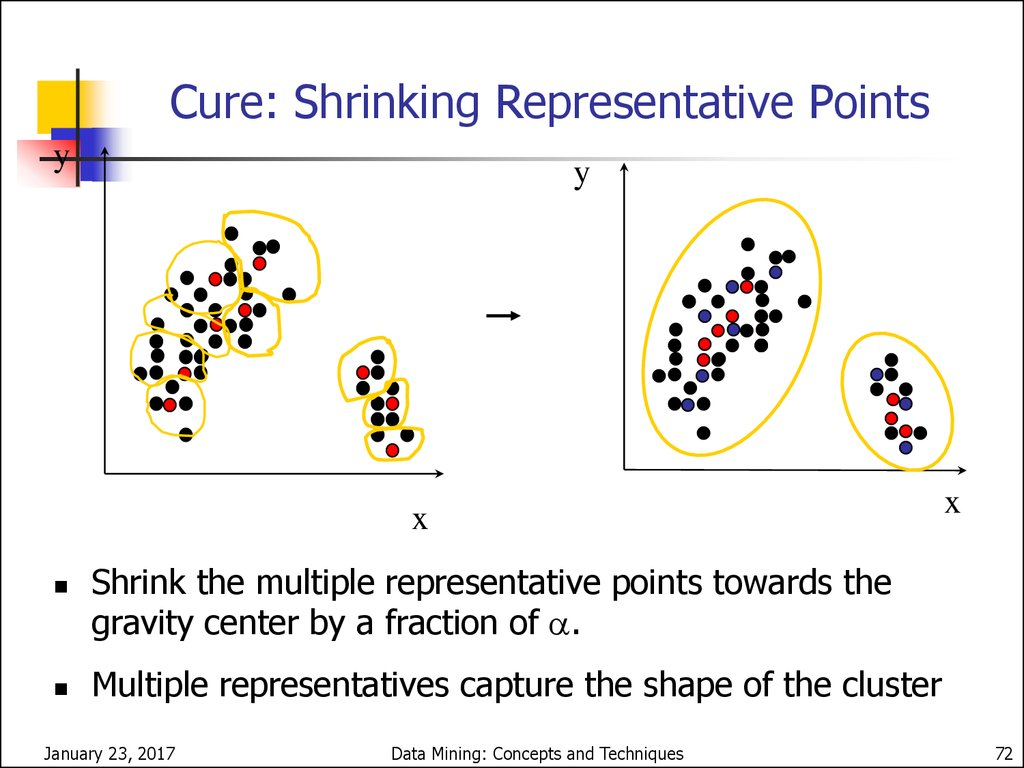 applications of clustering in data mining